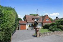 3 bed Bungalow for sale in Parkway, Eastbourne...