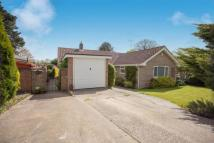 Bungalow for sale in Angus Close, Horsham...