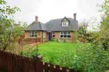 4 bedroom Bungalow for sale in Blackgate Lane, Henfield...
