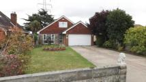 Bungalow in Magna Road, Bearwood...