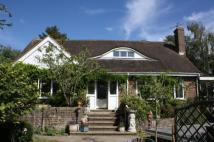 Bungalow for sale in Nepcote Lane, Findon...