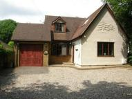5 bed Detached house in Orange Tree Hill...