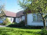 Bungalow in Beech Avenue, Chichester...