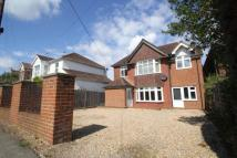 4 bed Detached house in Moorgreen Road, West End...