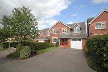 Detached house for sale in White Tree Close...