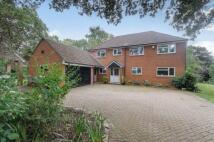 Netley Lodge Close Detached property for sale