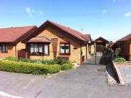 Bungalow for sale in Ffordd Tan'r Allt...