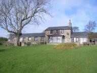 Detached property for sale in Mynytho, Gwynedd