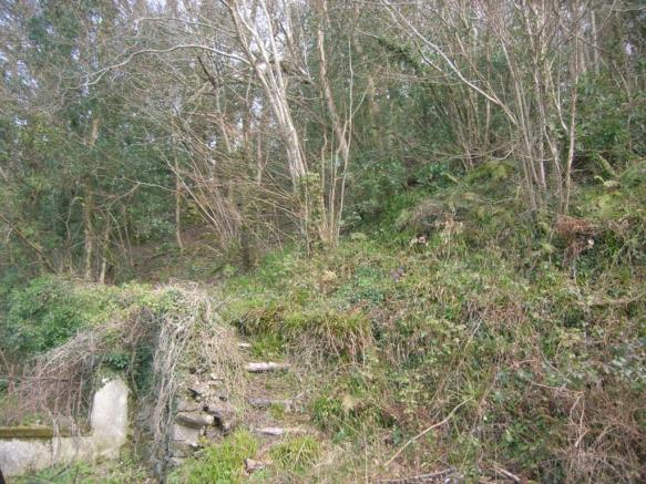 Access to woodland a