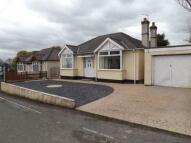 Bungalow for sale in Aston Hill, Ewloe...