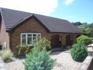 3 bed Bungalow in Old London Road, Flint...