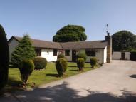 3 bed Bungalow for sale in Naid Y March, Holywell...