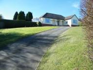 3 bedroom Bungalow in Sandy Lane, Bagillt...