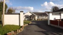 4 bed Bungalow in Carmel Hill, Carmel...