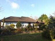 4 bedroom Bungalow in Gorsedd, Holywell...
