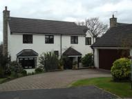 4 bed Detached house in Bryn Rhosyn, Pantymwyn...