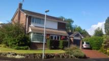 4 bedroom Detached property in St. Peters Park, Northop...