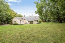 4 bed Detached home in Wern Road, Rhosesmor...