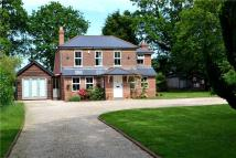 Detached home in Main Road, Walhampton...