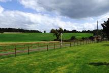 4 bedroom Equestrian Facility house in North Road...