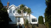 8 bedroom End of Terrace home for sale in Windsor Road, Torquay...