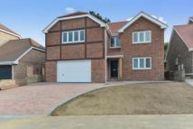 new home in Rush Close, Shanklin...