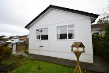 3 bedroom Bungalow in Steeple View Court...