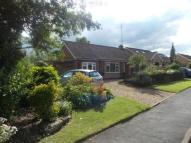 Bungalow in Brook Lane, Great Easton...