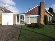 Bungalow for sale in Whiteoaks Road, Oadby...