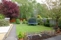 4 bed Bungalow for sale in Beech Drive, Clough Hall...