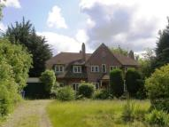 5 bedroom Detached house in Newmarket Road, Norwich...