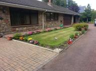 Bungalow for sale in Green Lane Close...