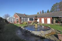 3 bedroom Bungalow for sale in Carr Brow, High Lane...