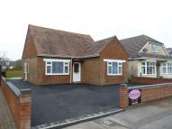 Detached Bungalow to rent in Flambard Avenue...