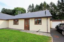 2 bed Detached Bungalow in Maes Hir, Llandrillo...
