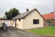 Detached Bungalow to rent in Maes Hir, Llandrillo...