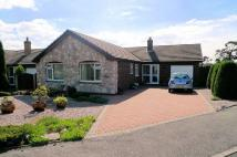 Detached Bungalow for sale in Bodfari, Denbigh