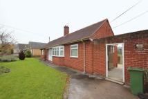 Detached Bungalow to rent in Llanfair Road, Ruthin