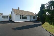 Upper Denbigh Road Detached Bungalow for sale
