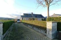 Detached Bungalow in Llanynys, Denbigh