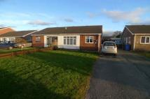 Semi-Detached Bungalow to rent in Crud Y Castell, Denbigh