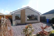 Detached Bungalow to rent in Tan Y Bryn, St Asaph