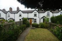 Cottage to rent in Ysgubor Wen, Denbigh