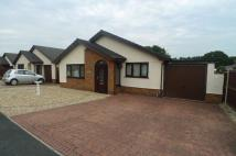 Detached Bungalow to rent in Ffordd Pen Y Maes...