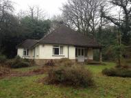 Detached Bungalow to rent in COPTHORNE COMMON...