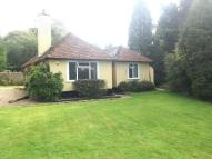 Grants Lane Detached Bungalow to rent