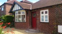 Bungalow for sale in School Road, Handforth...