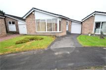 2 bedroom Detached Bungalow for sale in Shady Oak Road, Offerton...