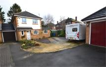 3 bed Detached house for sale in Buckwood Close...