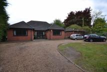 4 bed Detached Bungalow for sale in Stanford Road, RM16